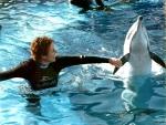 me & dolphin