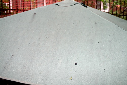 table umbrella
